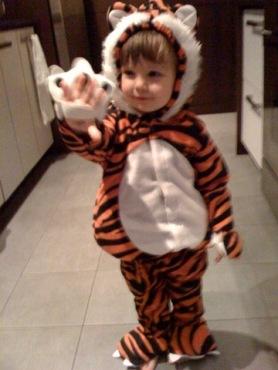 tiger says roaaaar