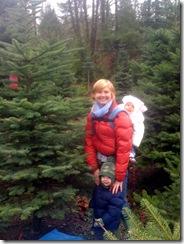 the tree 2009
