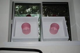 washers for the cure prize